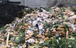 Утилизация и переработка пищевых отходов в сельском хозяйстве