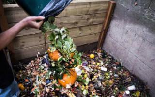 Переработка пищевых отходов в корма — реализация промышленным способом