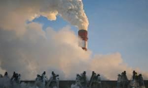 Экология новосибирска — стали ли чище районы города?