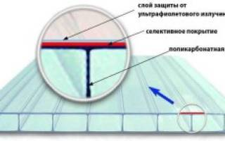 Характеристика, свойства и применение разных видов поликарбоната