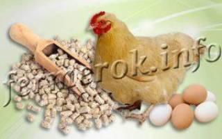 Комбикорм для кур своими руками — рецепт и технология приготовления