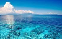 Проблема загрязнения океана
